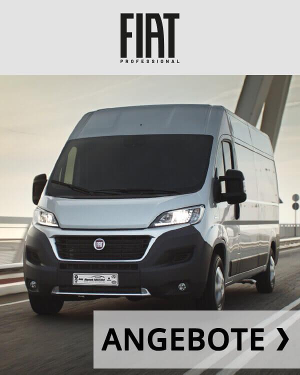 Autohaus Renck-Weindel - Fiat Ducato Transporter Silber mit Angebots Logo