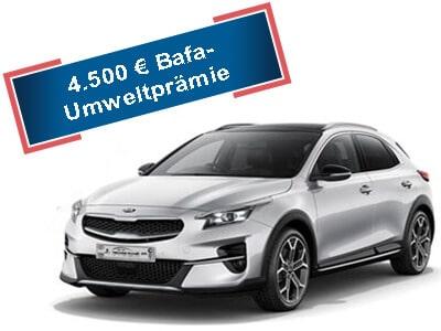 Kia XCeed PHEV 149mtl. - Autohaus Renck-Weindel